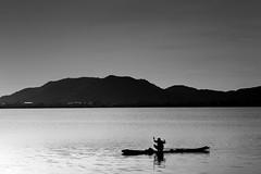 Fishing @ Kolavai Lake (bmahesh) Tags: light blackandwhite india lake water sunrise canon boat fishing fisherman canon5d chennai mahesh hardwork tamilnadu canonef24105mmf4isusm chengalpet canoneos5dmarkii kolavai kolavailake bmahesh