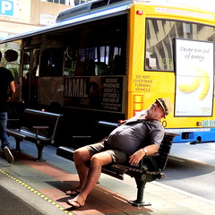 Never run out of energy  -On Explore!!  thanks guys!- (Grenzeloos1) Tags: man bus bench sitting brisbane busstop bananas tired queensland brisbanecity adelaidest neverrunoutofenergy