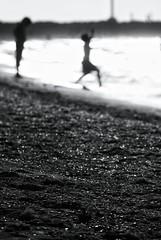 Youth (Mister Blur) Tags: abathoflight baño beach blur blurredbackground bokeh chuburná conchitas d60 de desenfoque disfrutando enlaplaya enjoying jóvenes la luz mexico méxico mrblur nikon onthebeach pearls perlas playa puerto rocoeno seashells selectivefocusing silhouette siluetas snapseed sunbathing unbañodesol y young yucatan yucatán rubén rodrigo fotografía profundidaddecampo