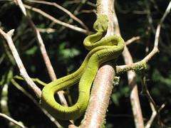 June 2012-Costa Rica 142