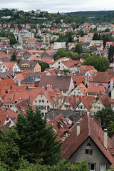 IMG_3652 (C.J. Wang) Tags: germany   tbingen canoneos6d