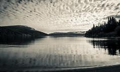 _MG_9658 (Fernandolunad) Tags: bw byn blackandwhite blancoynegro nature landscape lake sunset naturaleza paisaje lago ocaso