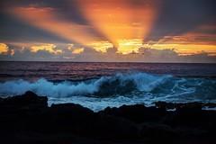 This must be the place (lenamullen1) Tags: sunrise makapuu oahu hawaii