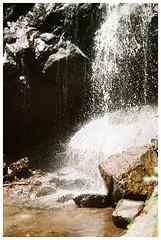 Pahuma 4 (Patrick J. Negwer) Tags: ecuador pichincha pintag pahuma reserva cascada rio agua verde sol cielo perro perros gusano plantas naturaleza