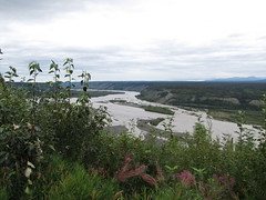 CopperRiver01 (alicia.garbelman) Tags: alaska copperriver rivers vistas waterways