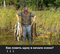 Как ловить щуку в начале осени? (ГосРыбнaдзор) Tags: gold the4elements red paisaje blue mare florida old