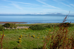 dogs_at_roman_fort_No1_3993-2 (allybeag) Tags: sea solway firth criffel field blue sky