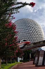 Earth in the Bushes (MCParradox) Tags: waltdisneyworld wdw disneyworld disneyparks epcot epcot82 epcotcenter wdwepcot monorail wdwmonorail monorailcoral spaceshipearth