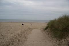 IMG_1058 (EadaoinFlynn) Tags: curracloe beach sea ireland irishsea wexford