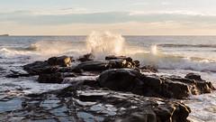 P1140562 (Pursuedbybear) Tags: alexandraheadland sunshinecoast beach sunrise waves
