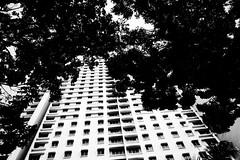 R0022108 (kenny_nhl) Tags: ricoh grd grdiv grd4 provoke street streetphotography shadow snap shot scene surreal streephotography visual 28mm monochrome malaysia black blackwhite bw blackandwhite life photo photography explore explored city