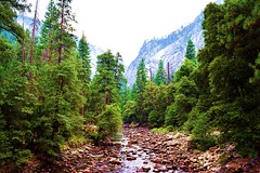 Yosemite National Park (RASH Photography....) Tags: nature outdoor hill mountain yosemite park ca california beautiful green