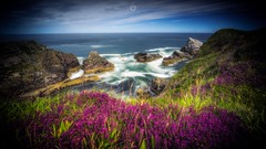 Old and New (Augmented Reality Images (Getty Contributor)) Tags: canon cliffs coastline flowers heather landscape leefilters longexposure morayshire portknockie rocks scotland summer sunshine water