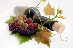 Weinflasche (mepillouno.com) Tags: germany essen trinken flasche wein feiern weinflasche kelter rebe weinrebe weinblatt traube weintraube genuf