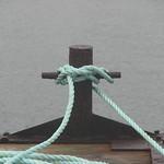 Knots thumbnail