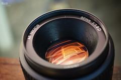THE FAMOUS ~ (Maria Laura ~) Tags: orange macro beautiful lens 50mm nikon famous nikkor 50tinha