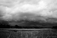 Frontal Lobe (Ray Skwire) Tags: weather newjersey nj shelf sj storms atlanticcounty cloudporn southjersey eht eggharbortownship clodus gustfront