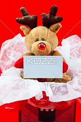 close shot of a cute teddy bear with a blank placard (ericphotos8877) Tags: birthday bear christmas xmas winter vacation stuffedtoy holiday cute festive toy religious photography stuffed shiny doll december message display sweet anniversary empty decoration fluffy nobody nopeople celebration indoors event gift blank teddybear surprise present manmade studioshot thorn decor information occasion displayed religiouscelebration placard packed softtoy traditionalculture christmaspresent surprising displaying christmasgift wrappingpaper giftbox redbackground colorimage fragility manmadeobject toyanimal christmasgiftbox animallikeness publiccelebratoryevents