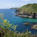 Cadgwith Cove, on Cornwall's Lizard peninsular