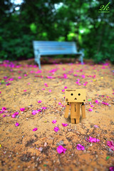 Join me on the bench? :) (2k Photography) Tags: flowers green fall love photoshop canon garden bench eos diy alone loneliness friendship heart bokeh mark ii 5d f28 danbo 2470mm ~2|{~ pushpdeeppandey 2kphotography