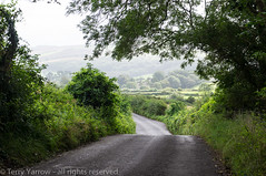 A Purbeck Lane (TDR Photographic) Tags: uk light england mist landscape sony dorset contrejour possibles motoring purbecks countryllane nex5n
