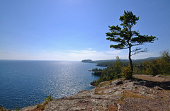 My favorite spot of the day (herecomesanothersongaboutmexico) Tags: seascape tree landscape horizon lakesuperior northernminnesota thenorthshore