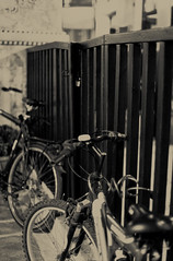 {day 251} (fro*) Tags: blackandwhite bw canon fence bikes bicycles 50mmf14 day251 hff project366 fencefriday