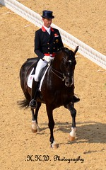 Carl Hester & Uthopia (GBR) (HKW Photography) Tags: horse walk riding olympic olympics passage rider trot horsebackriding canter horseriding gbr dressage piaffe carlhester uthopia hannahwatson hkwphotography halfpasspirouette