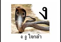 ง งู ใจกล้า