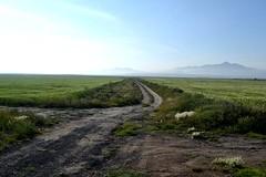 Valle de Tizayuca III