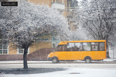 The appearance of a yellow bus (Alimkin) Tags: colorme краматорск концепт донецкаяобласть украинаukraine краматорскkramatorsk донецкаяобластьdonetskregion