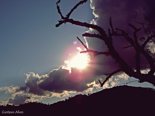 No sei se j perceberam, mas eu AMO fotografar a natureza. Ela me fascina todo dia! :) (Gustavo Allves) sunset pordosol sun nature nikon cut natureza coolpix nikoncoolpix l810 coolpixl810