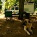 Camping em Pretoria