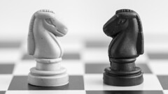 White Knight | Black Knight (Eduardo_il_Magnifico) Tags: opposites macromonday macro micro blackandwhite black white chess game knights boardgame bokeh nikond750 tamron90mmmacrovcusm tripod