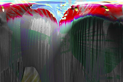 dripping color (susan_komer) Tags: manipulation photomanipulation photoshop hibiscus digitalmanipulation fun playful art fineart fineartphotography