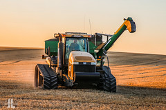 IMG_8475 (larzz4444) Tags: caterpillar tractor chester montana winterwheat chestermontana gleaner drylandfarming sweatgrasshills joplinmontana wheatharvest sunset