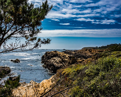 Point Lobos Sky (Maxinux40k) Tags: 2016 afs35mmf18ged beach california clouds d810 june landscape mitchellcipriano nature nikkor nikon ocean outdoors pointlobos sky spring water coast grass tree