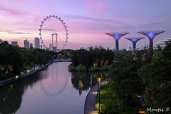 Singapore (Montse.P) Tags: singapur garden by bay fuji xt1
