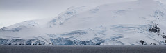 Pano Early Antarctica_MG_2993- resized (Robyn Aldridge Behind again due to more tripping..) Tags: antarctica antarcticpeninsula akademikioffe icescape ice icebergs icefloes iceberg landscape lrcc pscc patterns texture textures tamron water wasser waterscape white seascape snow shapes sea shoreline snowscape seas summertime seashore canon7d canon colour clouds coastline coast creative colourful colours outdoors oblong panorama mountains mountain morning moody nature