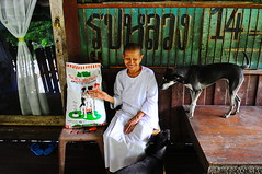 ,, Happy  ,, (Jon in Thailand) Tags: nun happy dog dogs k9 k9s jungle kibble happybuddhistnun buddhism street streetphotography junglestylestreetphotography journalism junglejournalism green red orange smile thaismile reflection glassdoor pickets happydogs blue goodtimes chair table padlock 14 littledoglaughedstories