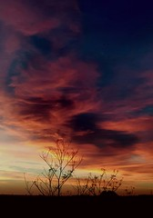 This mornings sky over Huntington (madmax557) Tags: uk england greatbritain huntingdon huntingshire skys sky sunrise eastanglia anewday daybreak startofanewday