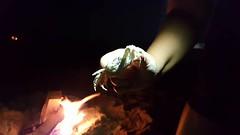 HIOC 10 (thenewclassy) Tags: outerbanks obxnow hioc hatteras hatterasisland ghostcrabs smores crabs crabbing beach beaches ocean oceancenter bonfire campfire beachbonfire beachcampfire constellations stars moon fullmoon northcarolina travel travelblogger cheapisthenewclassy