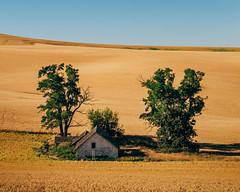 Hideaway (Pedalhead'71) Tags: uniontown washington abandoned house farm homestead wheat landscape palouse
