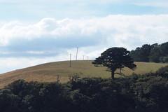 Wandering Poles (Grumpy O M) Tags: tree sky olympusstylus1 field landscape poles clouds
