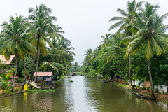 Appelley (Kerala), India (DitchTheMap) Tags: 2016 appelley backwaters india jungle kerala landscape vacation allepey asia asian backwater blue boat canal channel coconut dream flickr heaven heavenly hipster holidays houseboat idyllic outdoor outside palm paradise reflection retro river shot sky tourism tranquil transport transportation travel tree tropical vintage water waterway