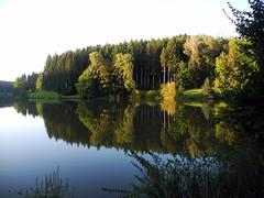 Rhenenmhlensee im Abendlicht (almresi1) Tags: schwbischfrnkischerwald schwbischgmnd ostalb spiegelung see lake landscape germany