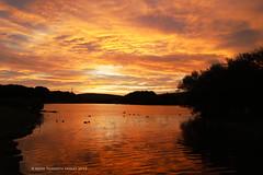 Sunrise over Herrington Park, England (Keith Tilmouth) Tags: reflections dawn sunrise herrington park sun morning