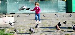 Chasing Pigeons (vladvizante) Tags: street photography kid child kids children playful pigeons birds cute pretty nikon d3300 urban city girl little
