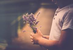 Bouquet for two...  (cristina.g216) Tags: ramo bouquet kid lavanda lavander manos hands bokeh flare desenfoque puente bridge nio