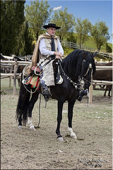 Gaucho (Nstor Pugliese) Tags: portrait horse caballo rider jinete restrato